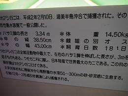 P1010032.jpg